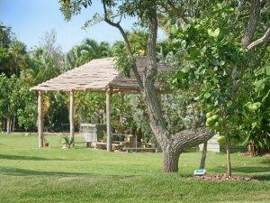 Bait Shack - Landscape, Fruit Orchard