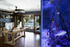 Tarpon Ranch - Office Aquarium