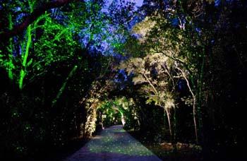 Bali Hai - Exterior Night, Coastal Source, Landscape Lighting