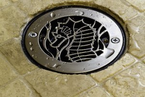 Bluefin Bay - Sea Life Drain Cover